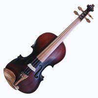 viola-nhureson-madeira-exposta-bgd-principal
