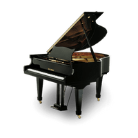 piano-cauda-fritz-dobbert-c160-principal