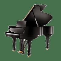 piano-acustico-steinway-modelo-a-cauda-new-york